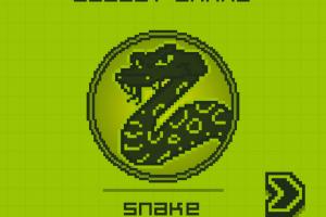 Nokia snake game